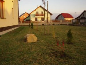 015-sazime--s-broucky-stromy