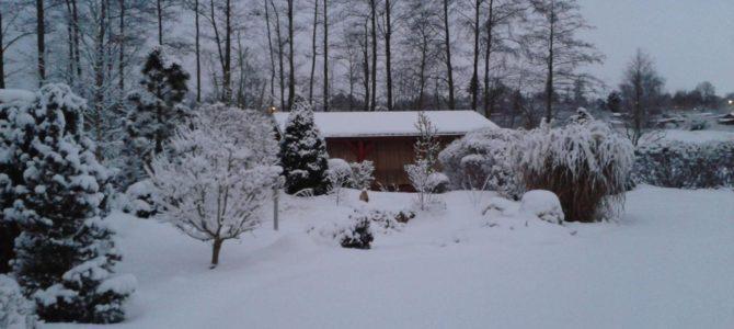 Díl XXIV.  …..a přijde i sníh…hodně sněhu…….