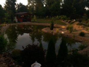 024 Letní zahrada po dešti